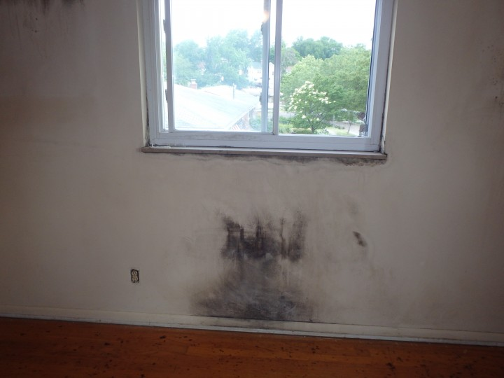 Mold Detection in Crestview Hills by Tri-State Restoration Services